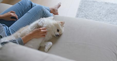Woman massage pomeranian dog at home