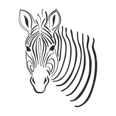 Line art zebra sketch, vector