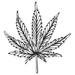 Hand drawn cannabis sketch, vector
