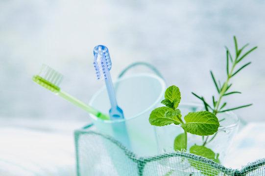 歯ブラシとハーブ