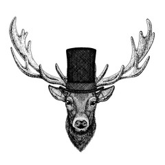 Wild animal wearing top hat, cylinder. Hipster deer