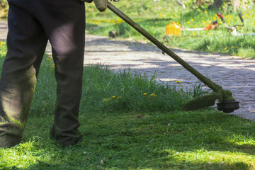 lawn mowing with brushcutter. springtime work in the park. pawed walkway. another tool lay in the grass in the distant blurred background.