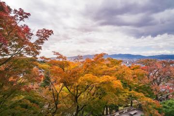 Autumn forest at Kiyomizu-dera buddhist temple, Kyoto, Japan.