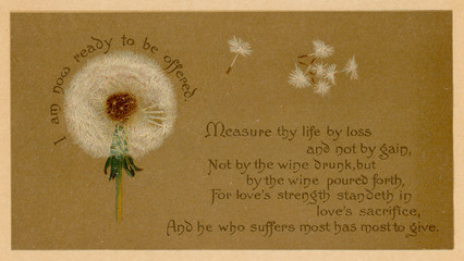 Dandelion Clock Prayer