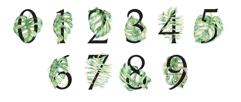 Black tropical set of numbers with green leaves illustrations