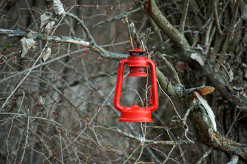 Red lantern in the woods. Suitable as a desktop background.