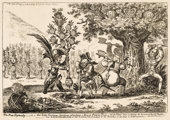 Napoleons Family Tree