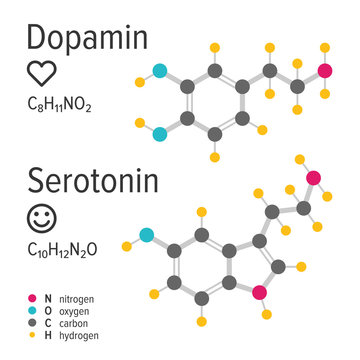 Dopamin and serotonin hormones vector chemical formulas. Love and happiness emotions. Chemical molecular model.