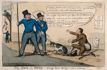 Arresting a Dog