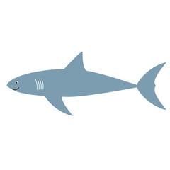 shark flat color art illustration