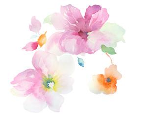 Watercolor set beautiful bouquets
