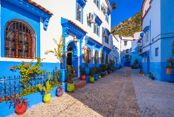 Photo sur Plexiglas Maroc Blue walls of Chefchaouen city medina in Morocco with bright doors and colorful flower pots with sun light. A magical fairy tale city of heavenly color