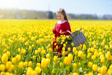 Child in yellow tulip flower field in Holland