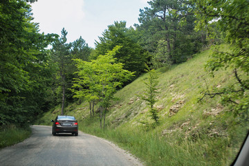 The road to the forest gorge.