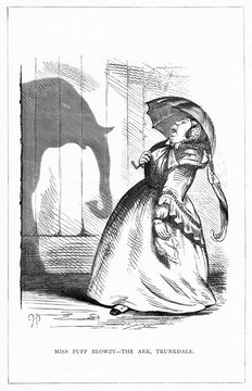 Shadow DrawingC HBennett, Miss Blowzy