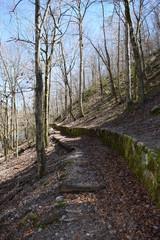 Little Missouri Trail in Ouachita National Forest Arkansas