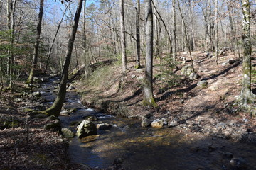 Hiking trail crossing a stream in Ouachita National Forest Arkansas