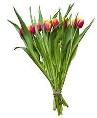 Isolated spring Easter bouquet of tulip flowers on a white background