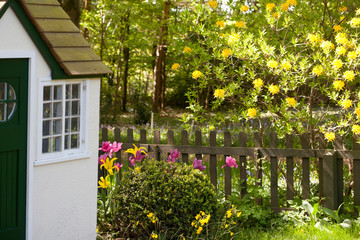 A charming cottage playhouse situated on the edge of woodland in springtime