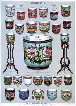 Flower Pots, Plate 64