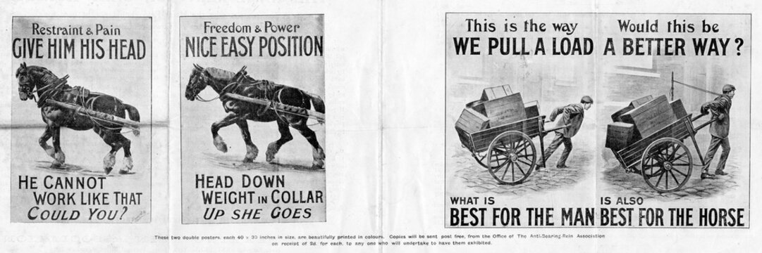 The AnTi Bearing Rein AssociaTion PosTers