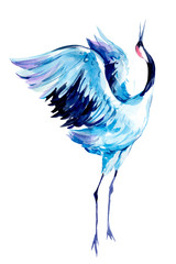 Crane. Watercolor hand drawn  illustration