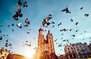Foto op Plexiglas Krakau St. Mary's basilica in main square of Krakow with flying pigeons