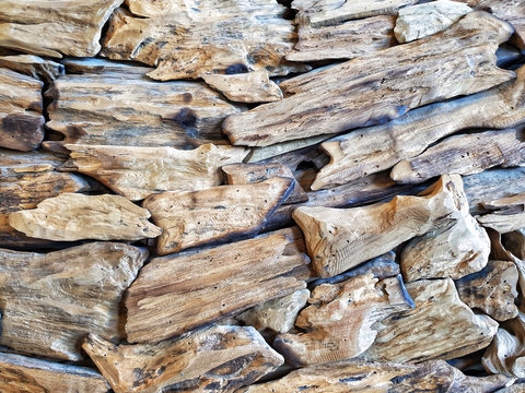Surface of the bark.Chips small pieces of wood are brought together in one piece.abstract background and pattern