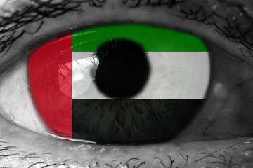 United Arab Emirates flag in the eye