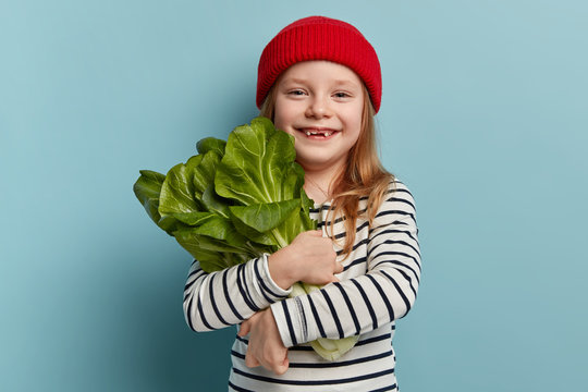 Children and healthy eating concept. Happy female child holds bok choy, returns from vegetable garden, being vegeterian, wears red hat and striped jumper, has good mood, wants to make salad.