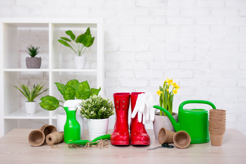 potted flowers and gardening tools with space over white brick wall