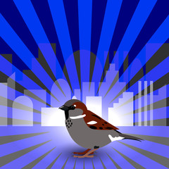 World Sparrow Day. Sparrow on the background of the cityscape and blue rays.