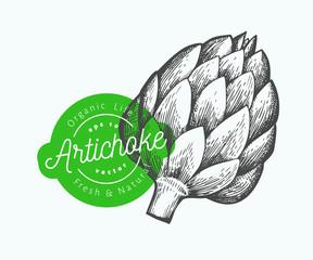 Artichoke vegetable illustration. Hand drawn vector food illustration. Engraved style vegetable. Retro botanical picture.
