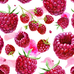 Watercolor illustration, pattern. Berries on white background. Raspberries, raspberries on a twig, pink spots.