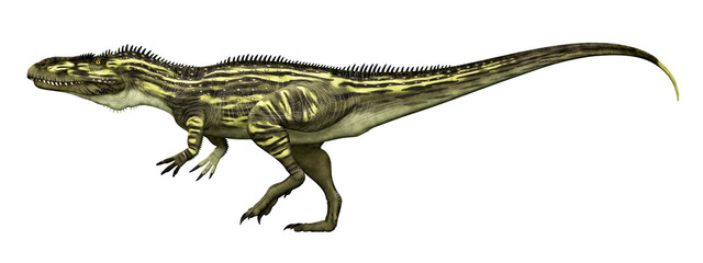 Dinosaurier Torvosaurus, Freisteller
