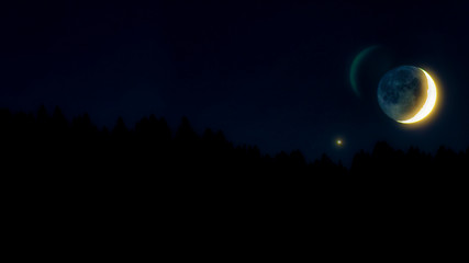 The half moon in the star sky with silhouetted trees.