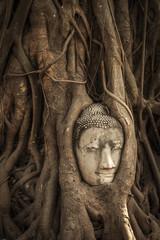 Buddha head in tree roots at Wat Mahathat, Ayutthaya, Thailand