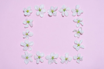 Square frame made of blooming apple flowers on light pink pastel background. Beautiful spring composition, women's or mother's day concept. Mock up, flat lay, top view, copy space for text