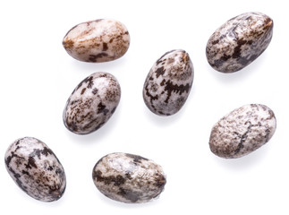 Several Chia seeds isolated on white background. Macro shot.