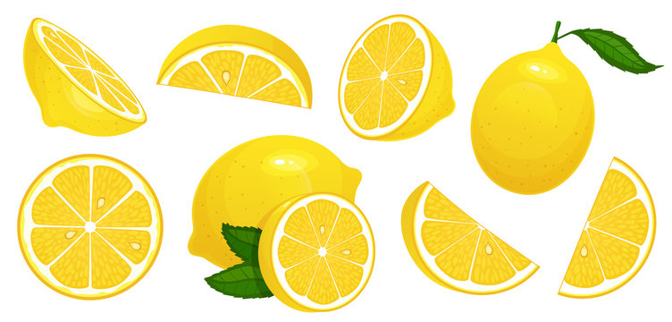 Lemon slices. Fresh citrus, half sliced lemons and chopped lemon isolated cartoon vector illustration set