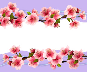 Illustration of a card with the flowers of cherry.