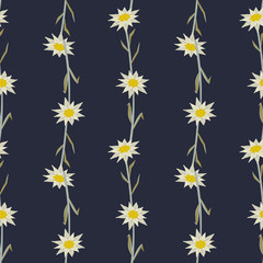 Floral hand drawn seamless pattern with edelweiss