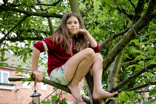 A caucasian tween or teen girl sitting in the branches of an apple tree peacefully - concept of tree climbing