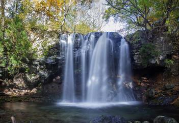 Wall Murals Waterfalls 栃木_乙女の滝