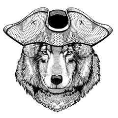 Wolf, dog wearing pirate tricorn hat. Capitan costume.