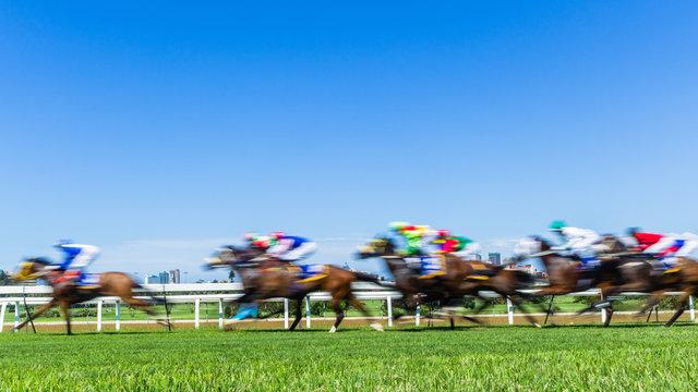 Horse Raceing Speed Motion Blur
