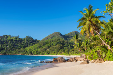 Fototapete - Tropical beach at sunset with coco palms in Seychelles. Summer vacation and travel concept.