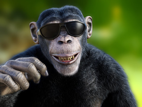 3D rendering of a chimpanzee wearing sunglasses.