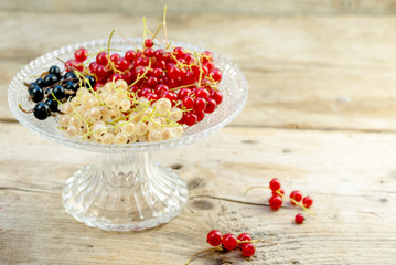 organic currant berries in red, black and white on a glass bowl  on rustic wood, copy space