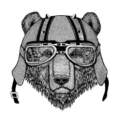 Bear wearing a motorcycle, aero helmet. Hand drawn image for tattoo, t-shirt, emblem, badge, logo, patch.
